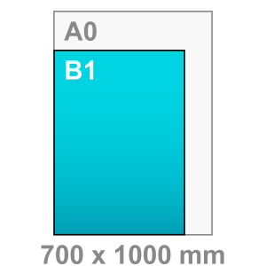 B1 Poster - staand - Poster maken - staand - DesignOntwerpen