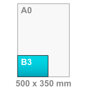 B3 Poster - liggend - Poster maken - liggend - DesignOntwerpen